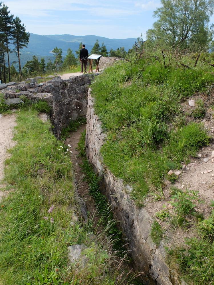 Les tranchées des Vosges, toujours présentes.